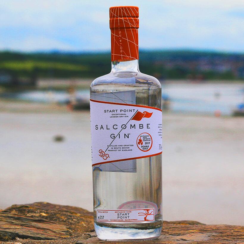 gin experience north devon